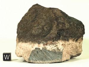 Dhofar019